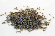 Bulk Lavender Buds for sachets or potpourri from the Texas Lavender Farm outside of Austin Texas
